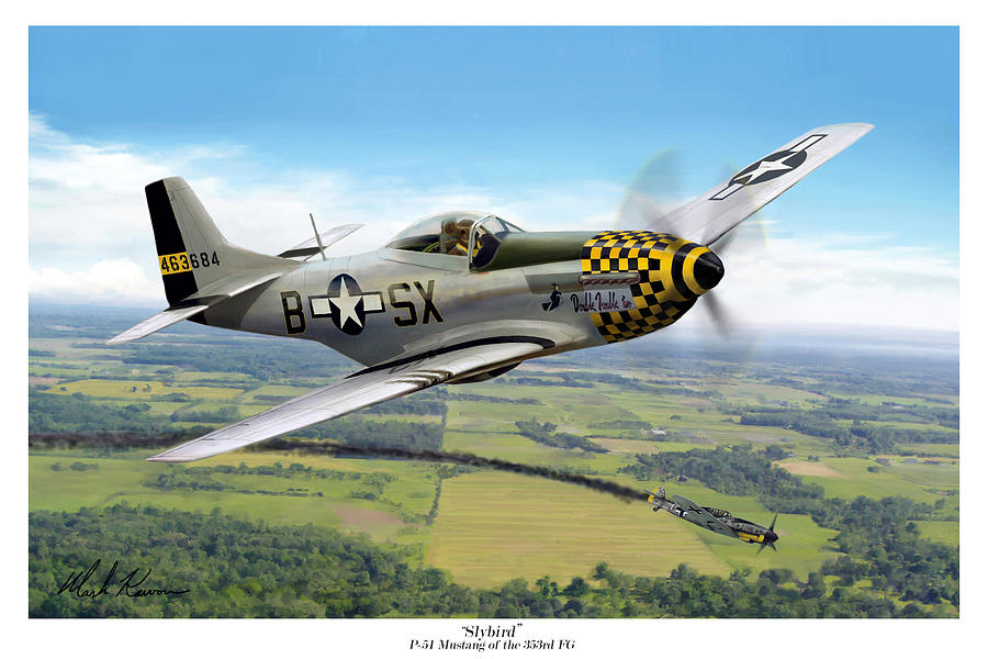 Aviation Painting - Slybird by Mark Karvon