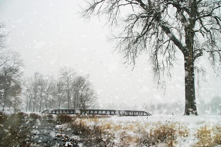 Snow Photograph - Snow Bridge by Chris Mautz
