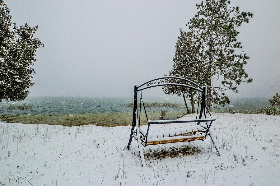 Snow Covered Swing DSC_0886 by Michael Thomas
