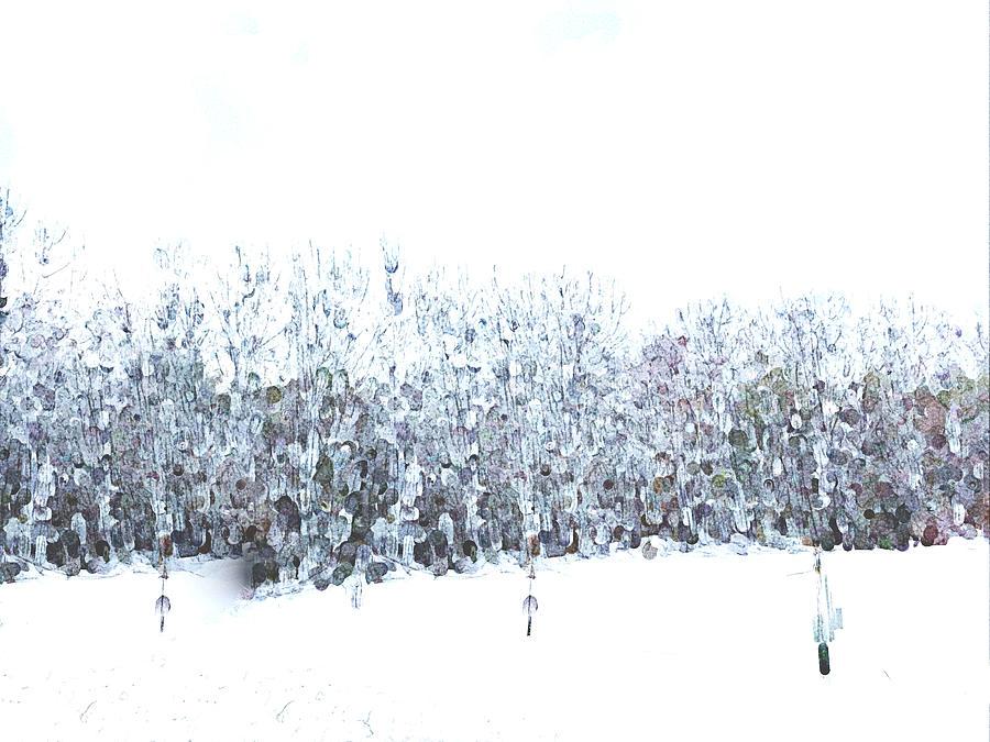 Snow Daze Photograph by Ali Bailey