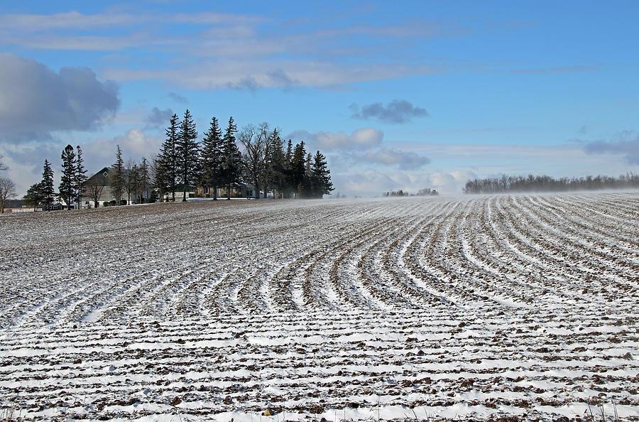 Snow Drifting Across The Field by Debbie Oppermann