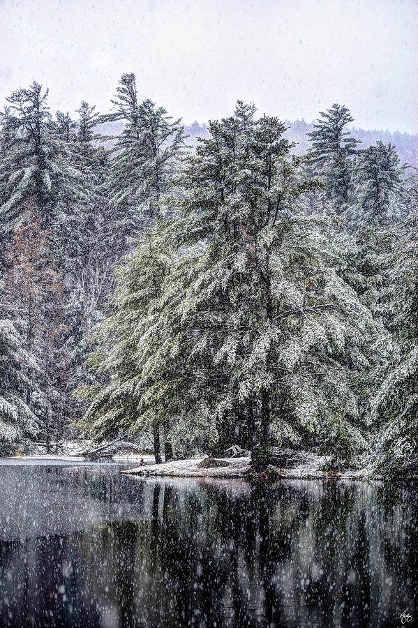 Snow Falls on Orris Point by Wayne King