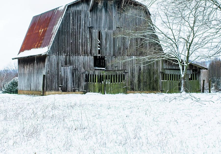 Snow On The Barn Photograph