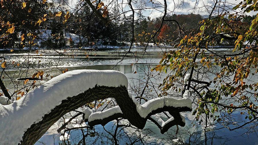 Snow Over Cranbrook Lake by Garth Glazier