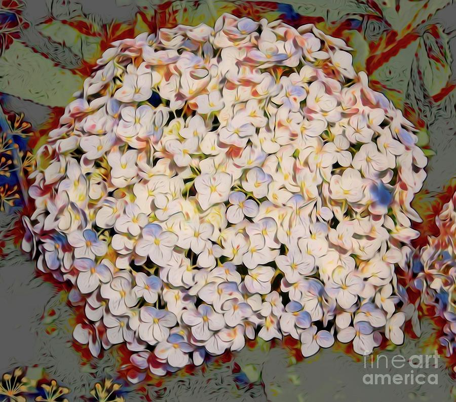 Snowball Hydrangea Flowers with a Broken Bits Abstract Effect by Rose Santuci-Sofranko