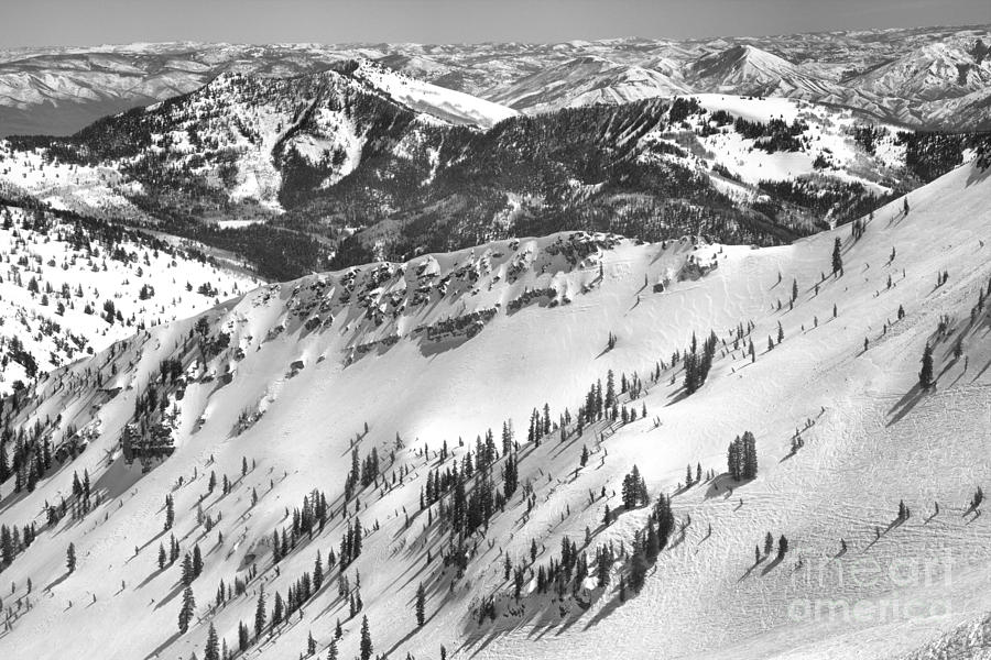Snowbird Powder Paradise Terrain Black And White by Adam Jewell