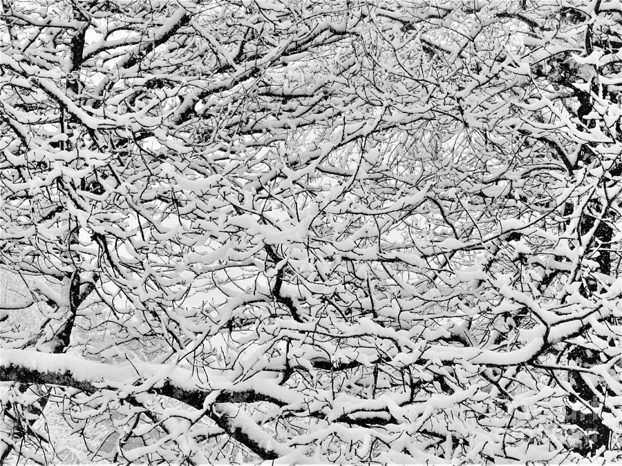 Snowy Abstract #1 Photograph