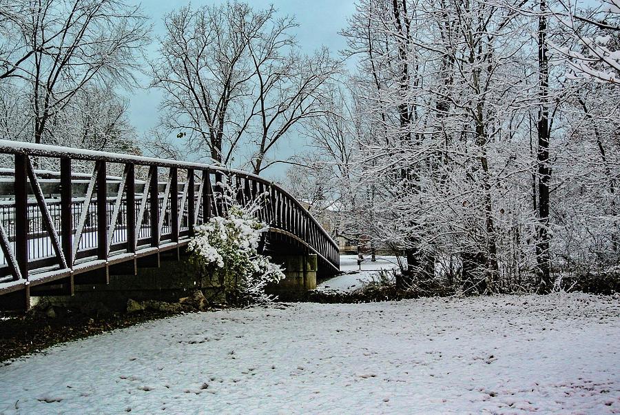 Snowy Clinton River Bridge DSC_2790 by Michael Thomas