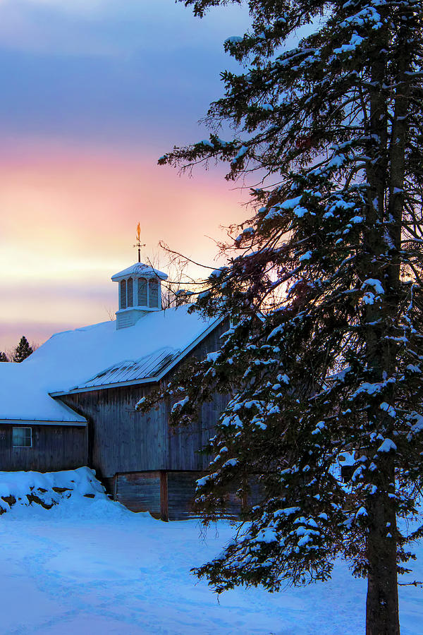 Snowy Country Sunrise by Joann Vitali