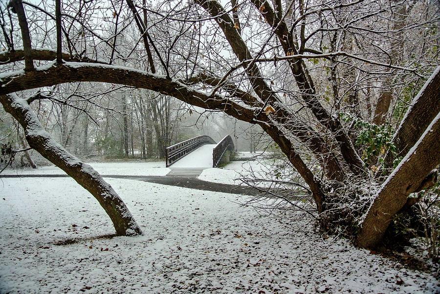 Snowy Foot Bridge DSC_2711 by Michael Thomas