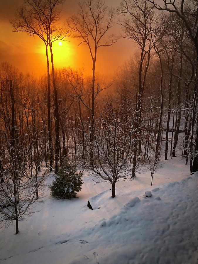 Sunset Photograph - Snowy Sunset by Cindy Keen