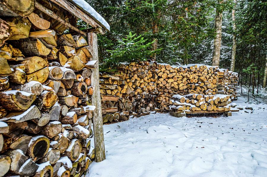 Snowy Woodpile DSC_0904 by Michael Thomas