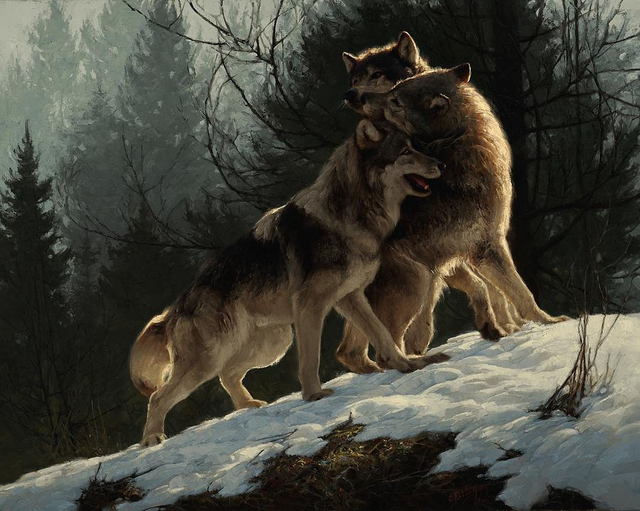 Wolf Painting - Social Climbers by Greg Beecham