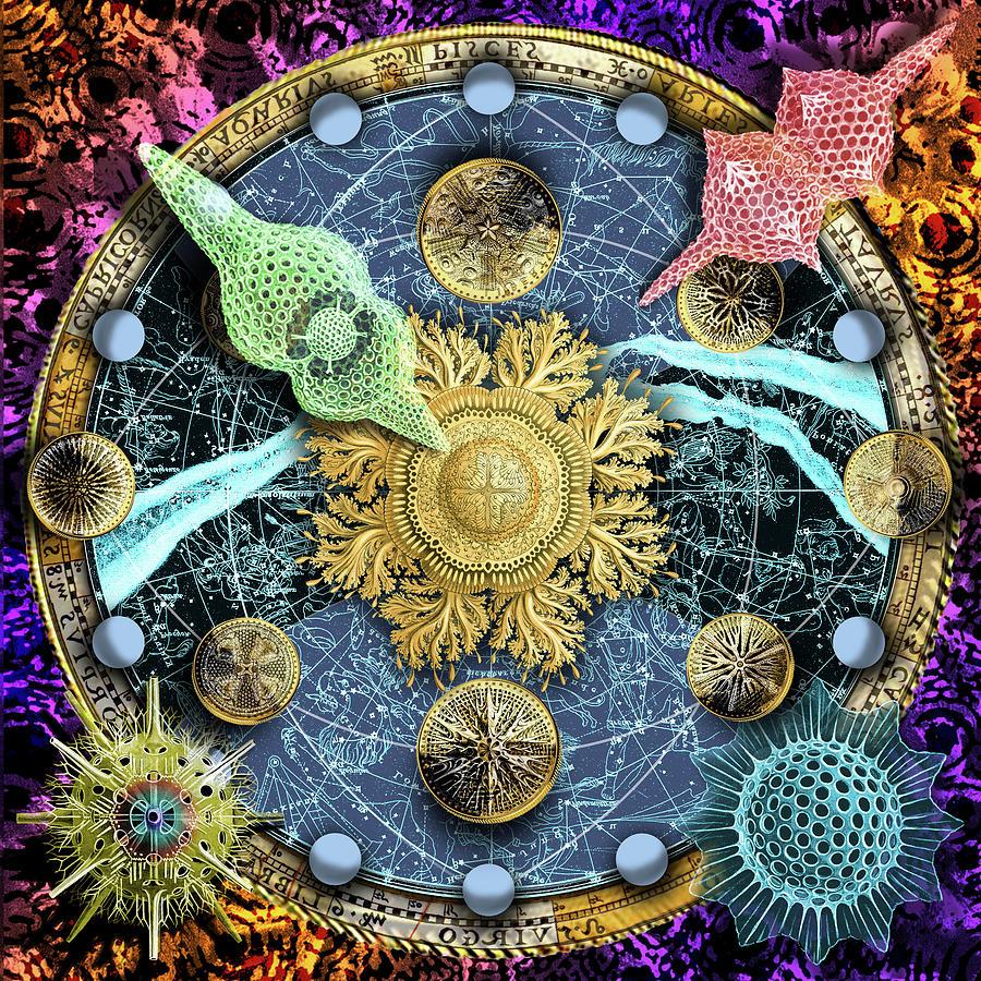 Celestial Digital Art - Solar Money by Mark Myers