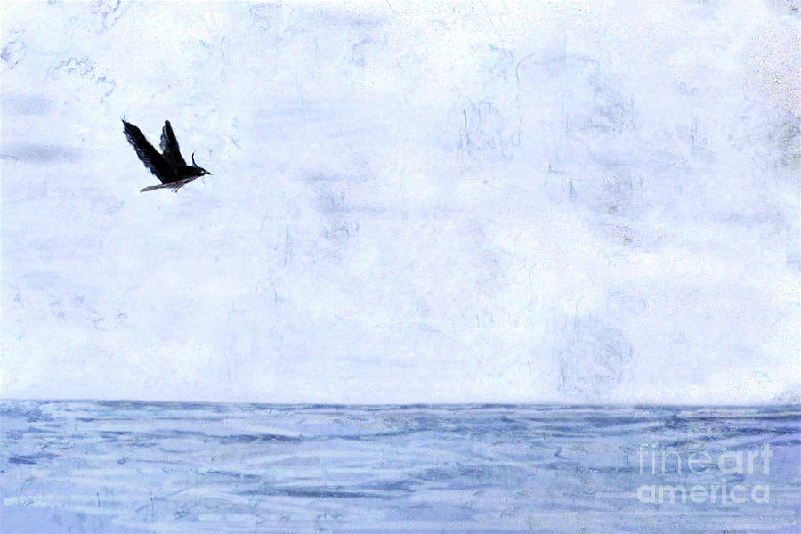 Solo Flight 300 by Sharon Williams Eng