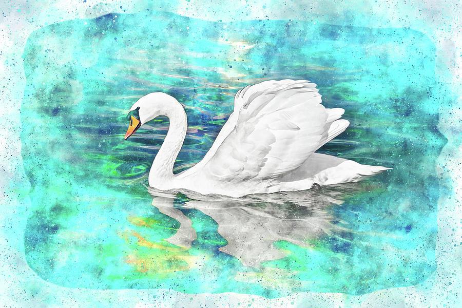 Solo Swan Watercolor Photograph