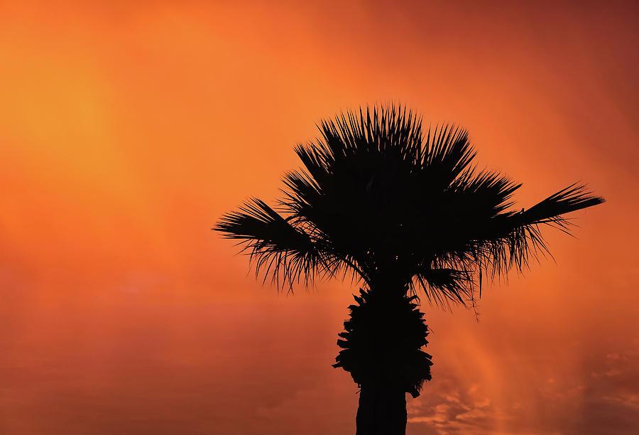 Soothing Sunset by ELAINE MALOTT