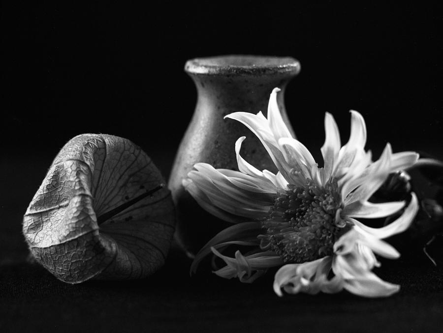 Soul, Body And Pleasure IIi Photograph