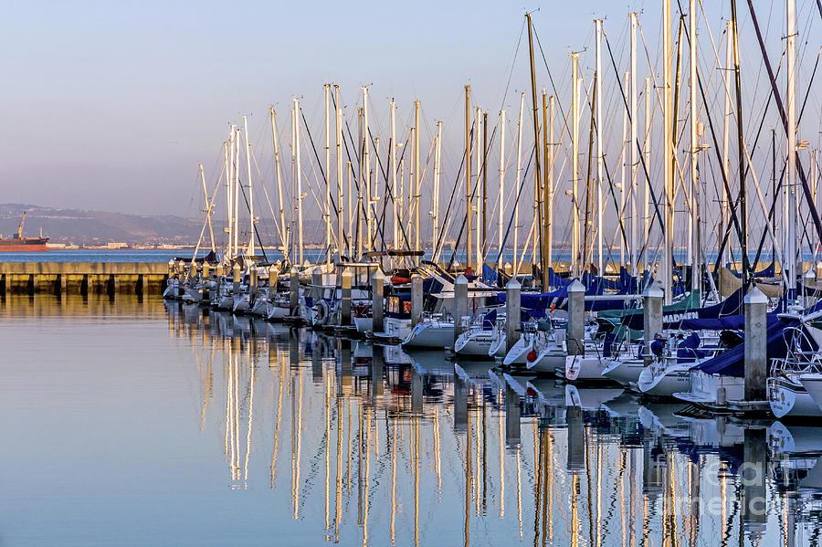 South Beach Marina by Kate Brown