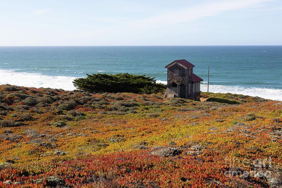 South Beach Point Reyes California R1893 by San Francisco