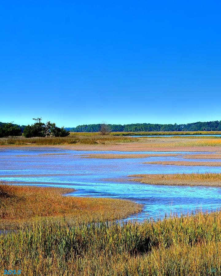 South Carolina LowCountry Hdr Vertical by Lisa Wooten