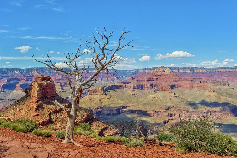 South Kaibab Trail 63 by Marisa Geraghty Photography