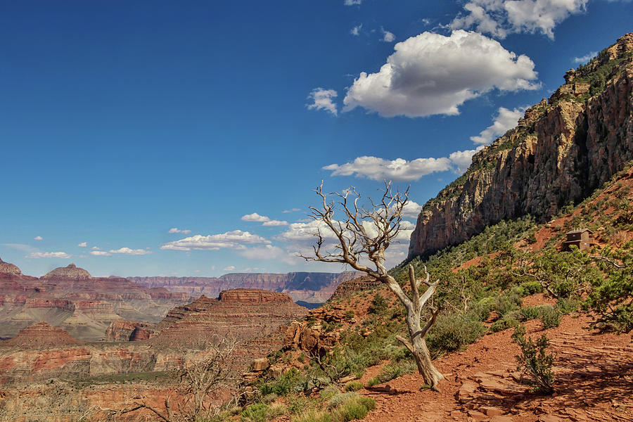 South Kaibab Trail 65 by Marisa Geraghty Photography