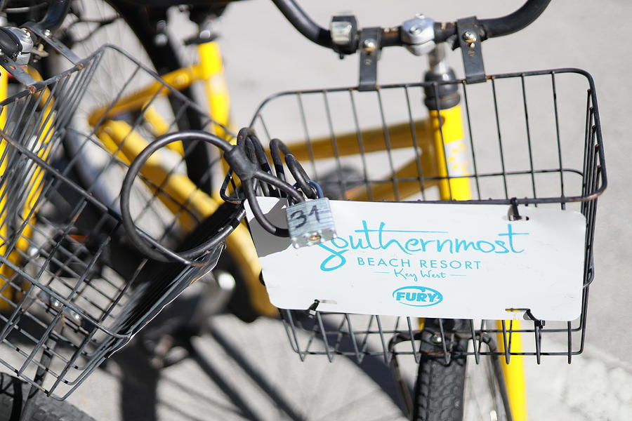 Southernmost Bicycle Basket by Blair Damson