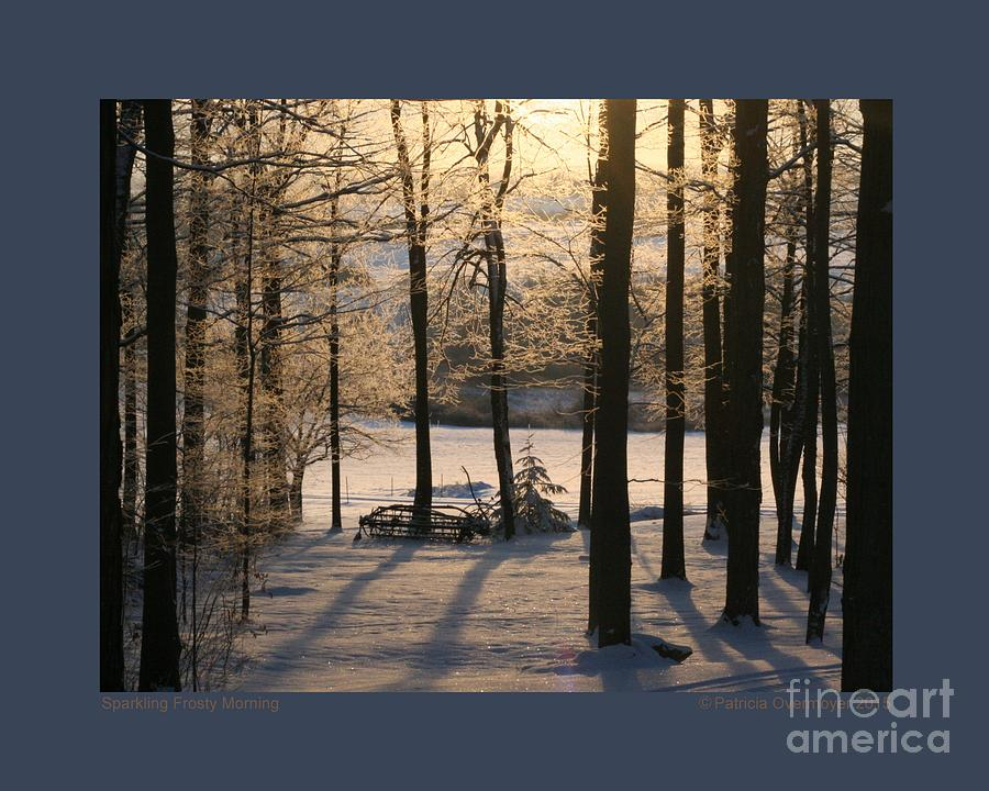 Sparkling Frosty Morning by Patricia Overmoyer