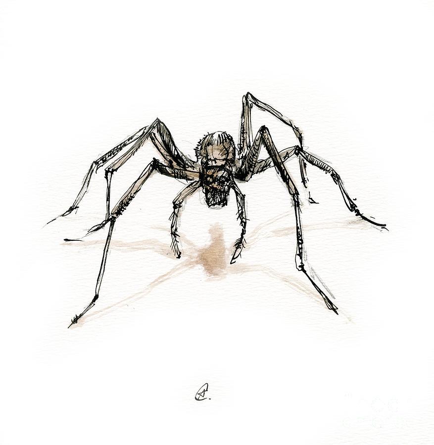 Spider by Angel Ciesniarska