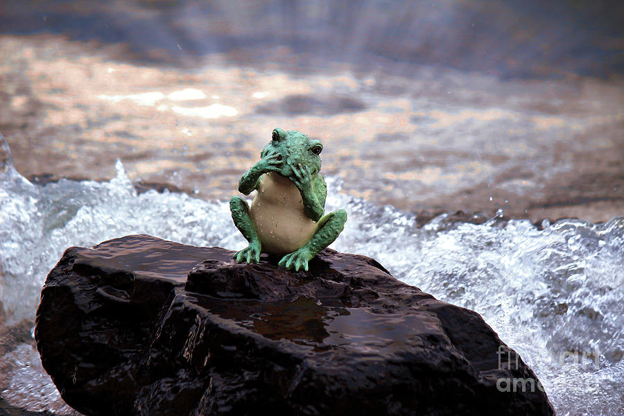 Splish Splash Photograph