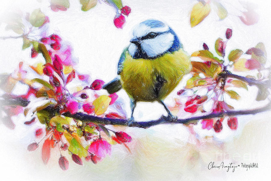 Spring Blossoms with Bird by Chris Armytage