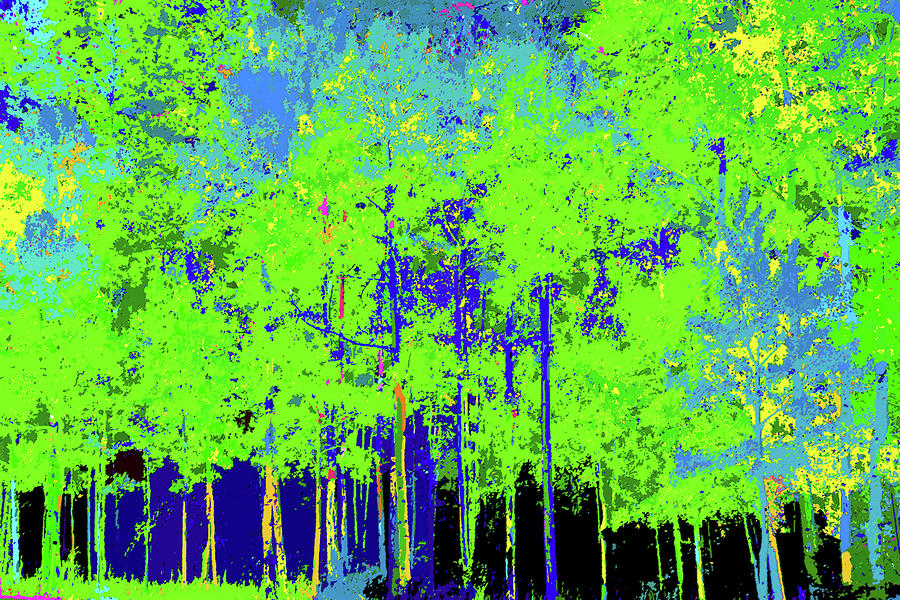 Spring Forest Painting