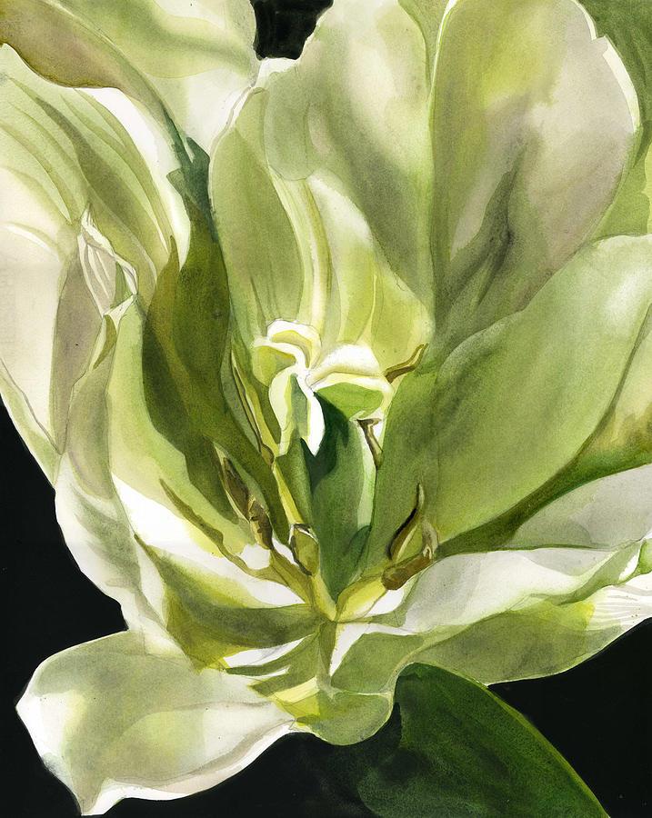 spring green tulip by Alfred Ng