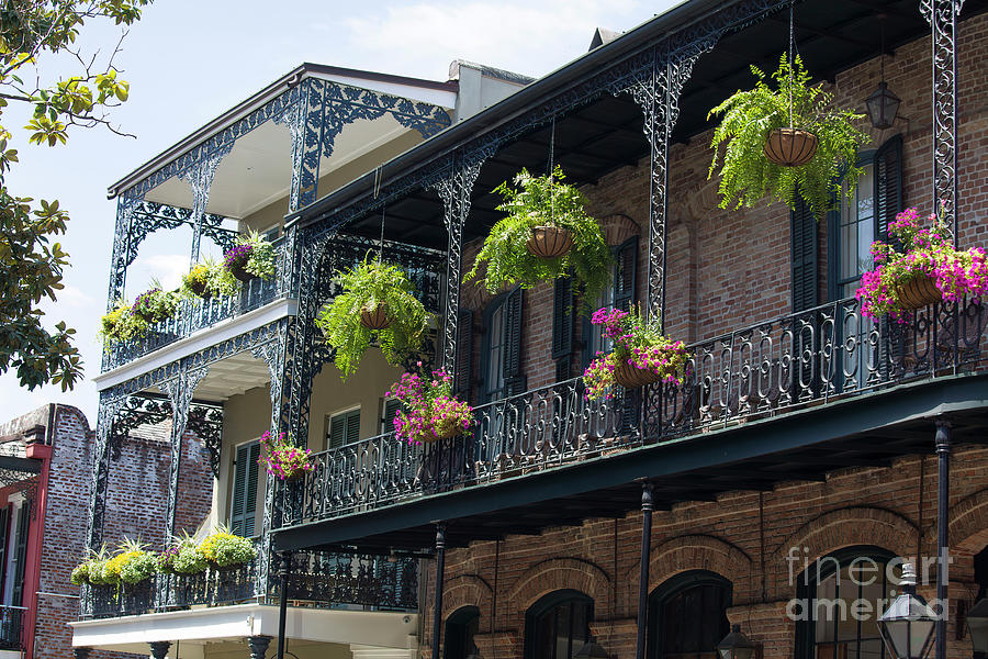 Spring Photograph - Spring In New Orleans by Felix Lai