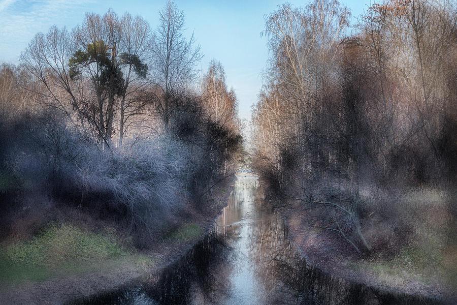 Landscape Photograph - Spring Morning by Margarita Buslaeva