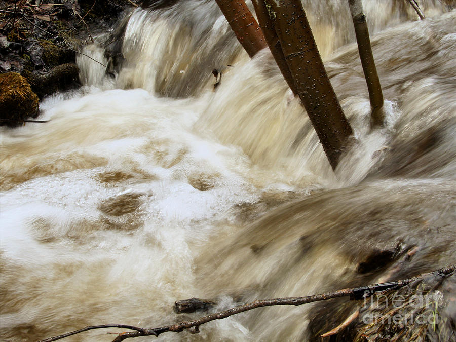 Creeks Photograph - Spring Runoff 2 by Roland Stanke