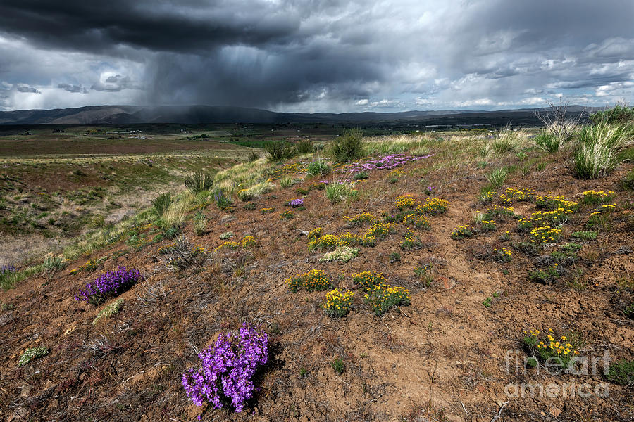 Spring Storm Over Clemans Photograph