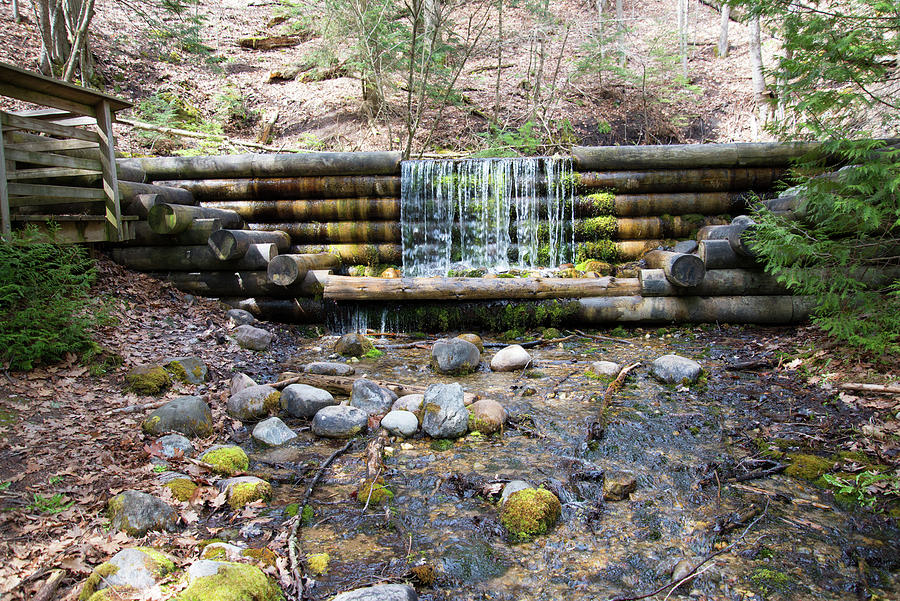 Spring Water Photograph