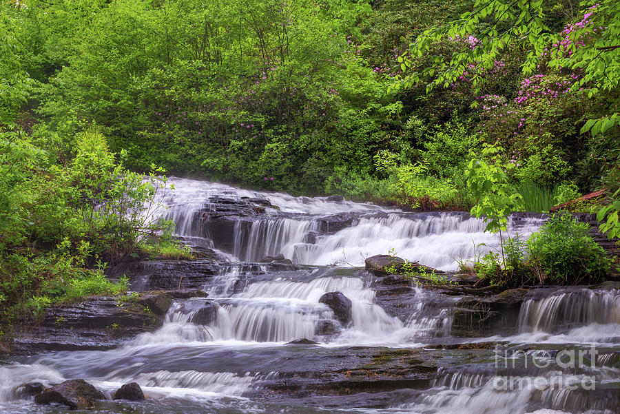 Spring Waterfall by Sharon Seaward