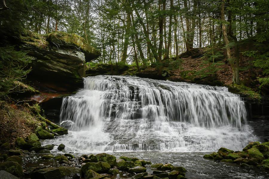 Springfield Falls 2 Photograph