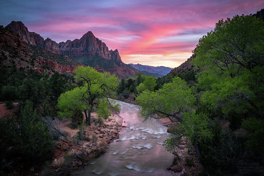 Springtime Sunset At Zion National Park Photograph
