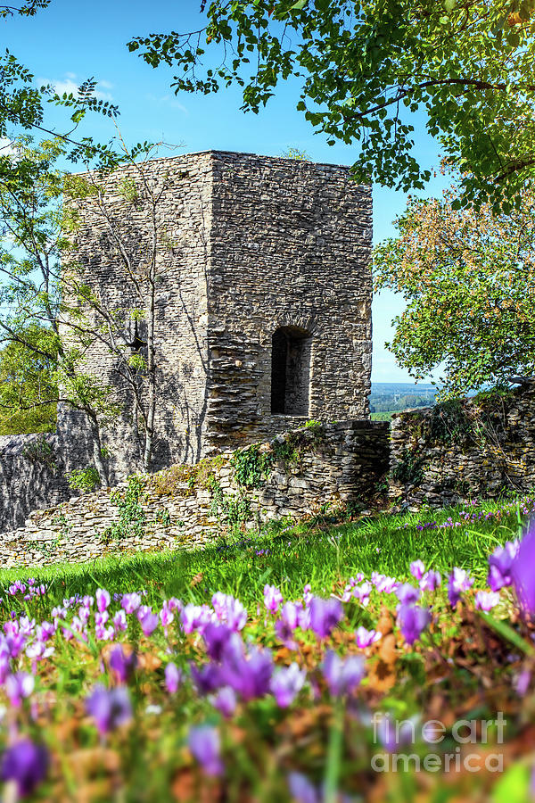 Square stone tower along medieval rampart in flowered meadow by Gregory DUBUS
