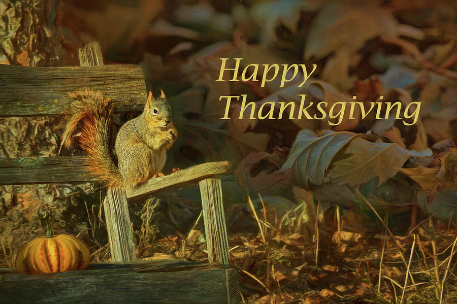 Squirrel On Bench Happy Thanksgiving Photograph By Nikolyn Mcdonald