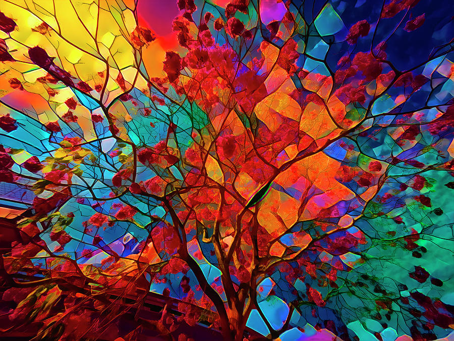 Stained Glass Tree GOPR3705 by Carlos Diaz