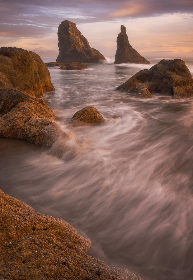 Oregon Photograph - Stand Together by Darren White