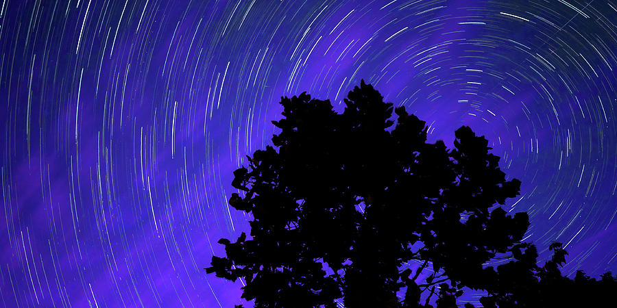 Star Trails In The Night Sky Panorama Photograph