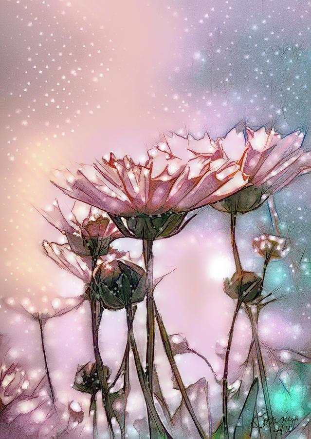 Starlit Gerbera Daisy by Bonnie Willis