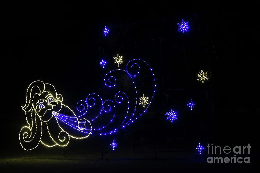 Starry Night by Ann Horn