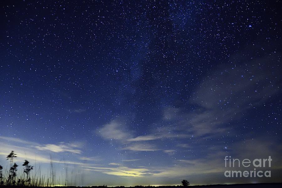 Starry Starry Night by Larry Ricker